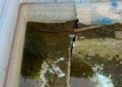 Arreglo, reparacion y pintura de pileta
