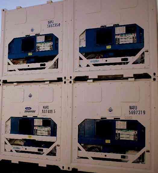 Cámaras de congelados Carrier 20 y 40 pies