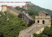 Traductor /guía chino español en shanghai, china