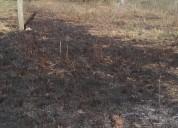 Terreno en arroyo seco